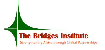 The Bridges Institute